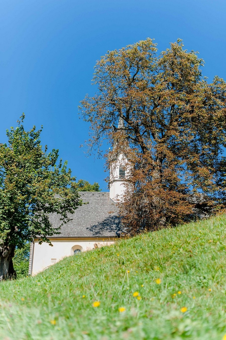 hochzeit-hasenoehrlhof-bayrischzell-huette-natur-26